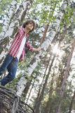 Low angle view of male hiker standing in forest Royalty Free Stock Photography