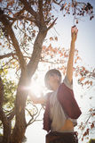 Low angle view of man reaching at fruits hanging on branch Royalty Free Stock Images