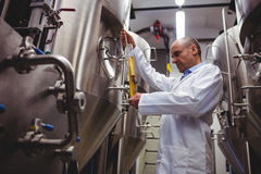 Low angle view of manufacturer examining beer Royalty Free Stock Images