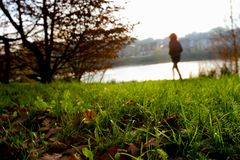 Low angle view over wet grass of a person walking royalty free stock image