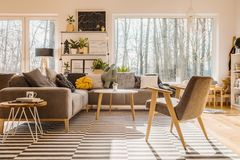 Low angle view of a scandinavian, sunlit living room interior wi. Th a gray armchair, sofa, and a big window. Real photo Stock Photos