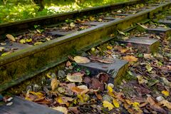 Low angle view of small railway tracks in mountain region with shallow depth of field