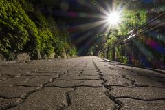 A low angle view of stone block paved street and a lay of light from streetlamp, with trees in the night royalty free stock images