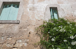 Low angle view of stone wall house with flower plant growing in foreground Royalty Free Stock Photography