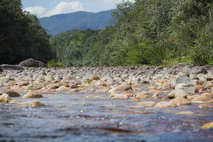 Low angle view of stones in the river in Venezuela royalty free stock photo