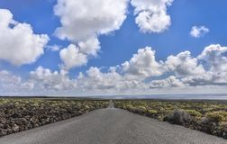 Low angle view of straight road through scenic volcanic landscape against blue sky and white clouds, Lanzarote. Europe stock photo