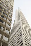 Low angle view of the Transamerica Pyramid San Francisco designed by William Pereira Royalty Free Stock Images