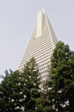 Low angle view of the Transamerica Pyramid San Francisco designed by William Pereira Royalty Free Stock Photos