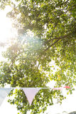 Low angle view of trees at festival Royalty Free Stock Photos