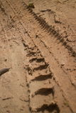 Low angle view vertical CU  muddy jungle road with knobbed tire tracks curving left Stock Photos