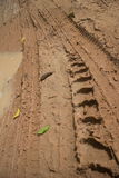 Low angle view vertical CU  muddy jungle road with knobbed tire tracks and puddle edge on the left. Stock Photo