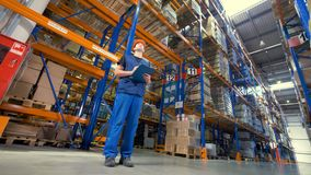 A low view on concentrated warehouse inspector. stock video