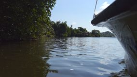 Low angle view of water surface from floating boat on river in tropical country at sunny day. The lake surrounded by. Coastline with green vegetation. Concept stock footage