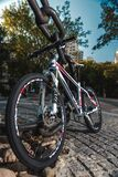 Low Angled Photo of Black Red and White Hardtail Bike Stock Image