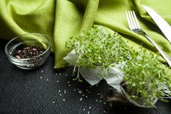 Low-calorie diet of fresh micro-green for better digestion stock photography