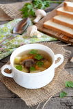 Low calorie soup with mushrooms, potatoes, carrots and parsley. Pieces of bread, spoon, parsley, fresh agaricus on a wooden table Stock Images