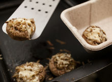 Low-calorie stuffed mushrooms Royalty Free Stock Photos