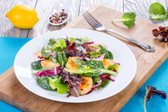 Low-calories salad with chicken breast, lettuce leaves Stock Images