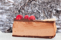 Low Carb Chocolate Cheesecake Slice Stock Photo