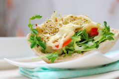 Low and closeup shot of healthy salad sandwich Royalty Free Stock Photography