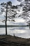 Mist on Loch Garten and hills in the Cairngorms National Park of Scotland. Royalty Free Stock Image