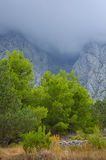 Low cloud in the mountains stock photography