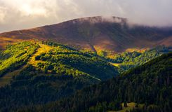 Low clouds above the forested hill in sunlight. Beautiful scenery of Carpathian Borzhava mountain ridge. lovely autumnal background Stock Image