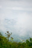 Low Clouds, Montenegro. Low clouds between mountains in the early morning (District Bar, Montenegro Royalty Free Stock Image