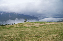 Low clouds in the mountains. Stock Photo