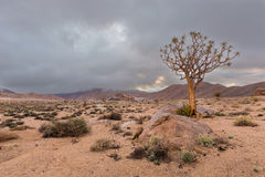Low clouds in Richtersveld Royalty Free Stock Photography