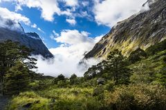 Panoramic Road leading to Milfordsound on the South Island of New Zealand royalty free stock photos