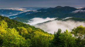 Low clouds in a valley, seen from Newfound Gap Road in Great Smo Royalty Free Stock Images
