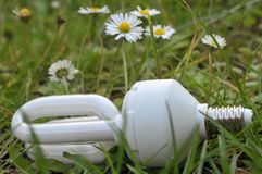 Low consumption electric bulb in the grass stock images