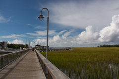 Low Country Boardwalk Stock Photos