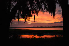 Low Country Sunset Stock Photos