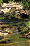 Low Creek. A creek bed with a low water fall Stock Image
