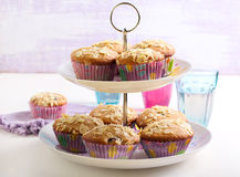 Low fat wholemeal muffins Stock Image