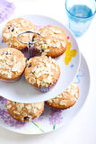 Low fat wholemeal muffins Stock Photo