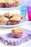 Low fat wholemeal muffins Royalty Free Stock Photos