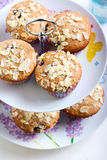 Low fat wholemeal muffins Royalty Free Stock Images