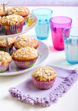Low fat wholemeal muffins Stock Photography