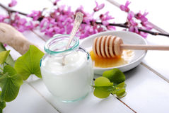 Low-fat yogurt Stock Image