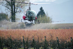 Low Flying Crop Duster. A Crop Duster sprays blueberry crops in Washington State on April 8, 2015 stock photos
