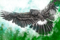 Low-flying eagle illustration over artistic background Royalty Free Stock Image