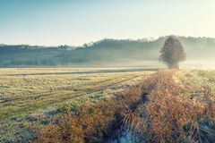 Low fog in sunday morning Stock Photo
