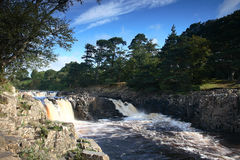 Low Force waterfall County Durham Royalty Free Stock Photography