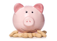 Low interest rates piggy bank. Studio cut out Royalty Free Stock Photo
