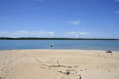 Low Isles, Queensland, Australia Stock Image