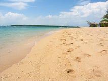 The Low Isles - Queensland Australia Stock Images