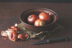 Onions in a brown clay bowl stock photography